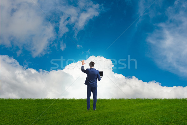 виртуальный Кнопки небе бизнеса трава Сток-фото © Elnur