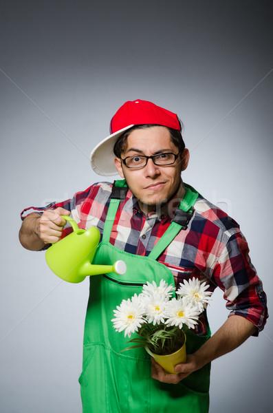 Vicces férfi locsolókanna virágok mosoly fű Stock fotó © Elnur