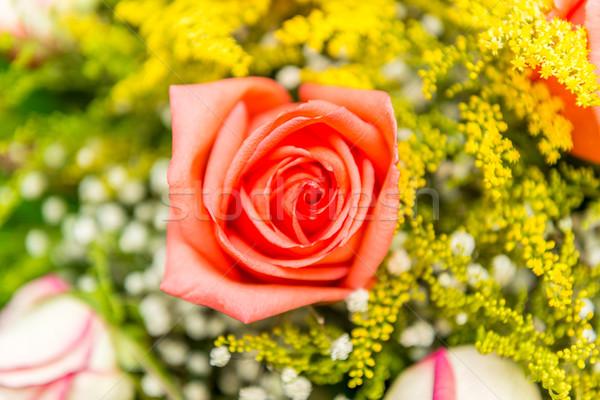 Nice roses in celebration concept Stock photo © Elnur
