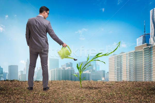 Geschäftsmann neue Business Wasser Geld Garten Stock foto © Elnur