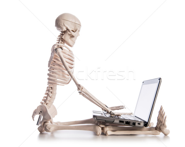 Stock fotó: Csontváz · dolgozik · laptop · üzlet · technológia · billentyűzet