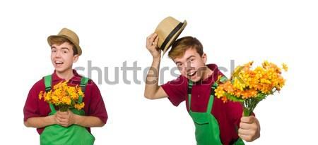 Jovem jardineiro flor isolado branco homem Foto stock © Elnur