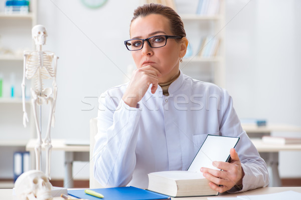 Woman doctor studying human skeleton Stock photo © Elnur