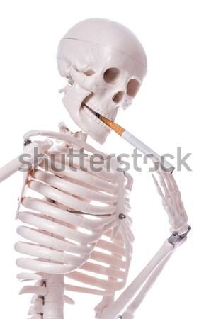 Skeleton smoking cigarette isolated on white Stock photo © Elnur