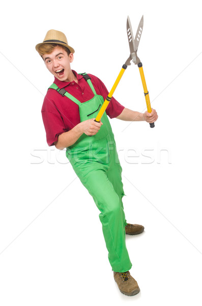 Man with shears isolated on white Stock photo © Elnur