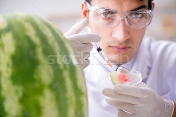ученого арбуза лаборатория врач фрукты Сток-фото © Elnur