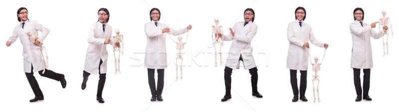 Foto stock: Engraçado · professor · esqueleto · isolado · branco · homem