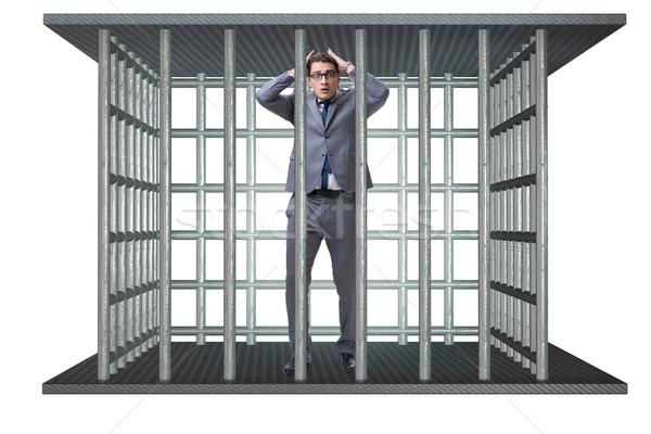 бизнесмен клетке изолированный белый бизнеса человека Сток-фото © Elnur