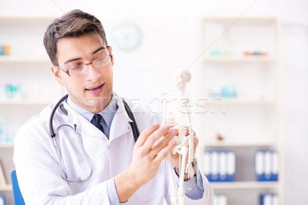 Arts uitleggen menselijke lichaam skelet man Stockfoto © Elnur