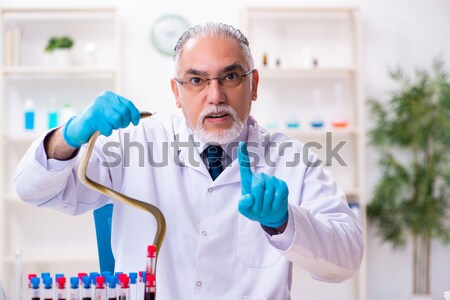 Stock photo: Blood testing in the lab with young scientist