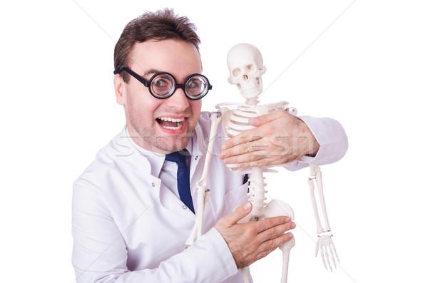 Engraçado médico esqueleto isolado branco mão Foto stock © Elnur