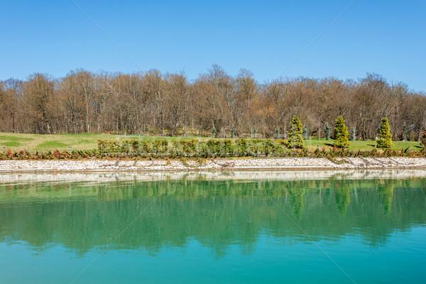 Forest near nice water pond Stock photo © Elnur