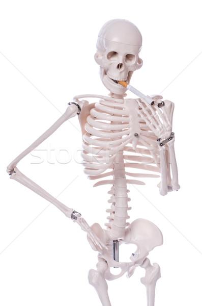 Csontváz dohányzás cigaretta izolált fehér férfi Stock fotó © Elnur