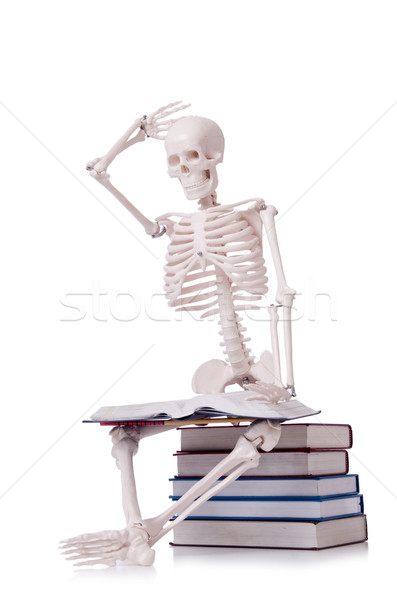 Skeleton reading books on white Stock photo © Elnur