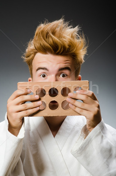 Vicces karate vadászrepülő agyag tégla modell Stock fotó © Elnur