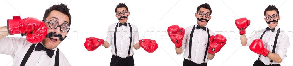Funny bokser odizolowany biały działalności pracy Zdjęcia stock © Elnur