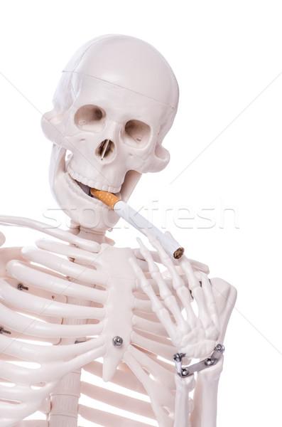 Scheletro fumare sigaretta isolato bianco uomo Foto d'archivio © Elnur