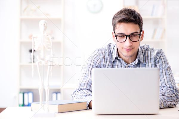 медик скелет компьютер человека врач здоровья Сток-фото © Elnur