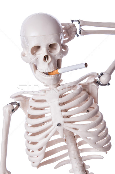 Esqueleto fumador cigarro isolado branco médico Foto stock © Elnur
