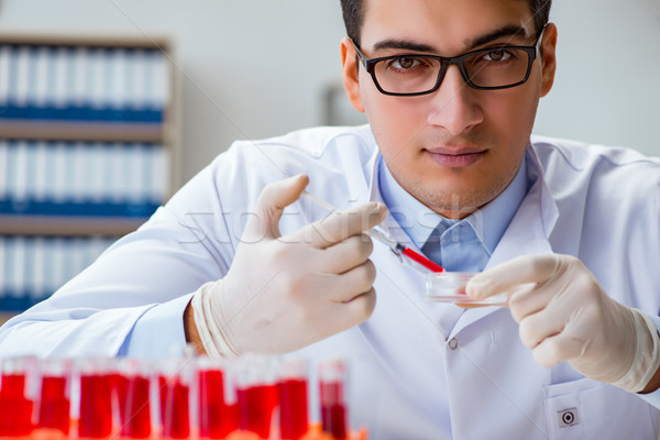 Arzt arbeiten Blut Proben medizinischen Technologie Stock foto © Elnur