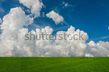 Nuvoloso cielo erba verde natura nubi primavera Foto d'archivio © Elnur