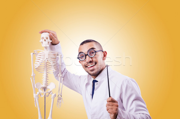 Funny doctor with skeleton isolated on white Stock photo © Elnur