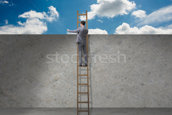 ストックフォト: ビジネスマン · 登山 · はしご · ビジネス · 男 · 背景
