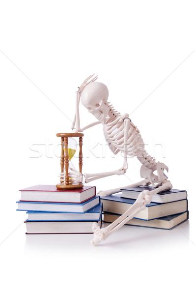 Szkielet czytania książek biały książki człowiek Zdjęcia stock © Elnur