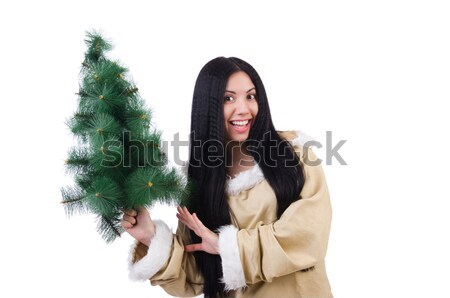 North woman with christmas tree isolated on white Stock photo © Elnur