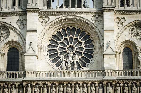 Elements of Notre dame cathedral Stock photo © Elnur