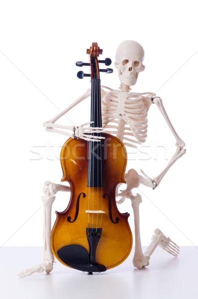 Csontváz játszik hegedű izolált fehér háttér Stock fotó © Elnur