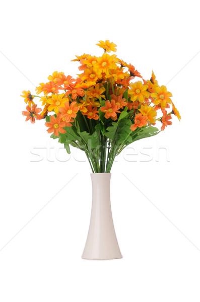 Daisy camomile flowers isolated on white Stock photo © Elnur
