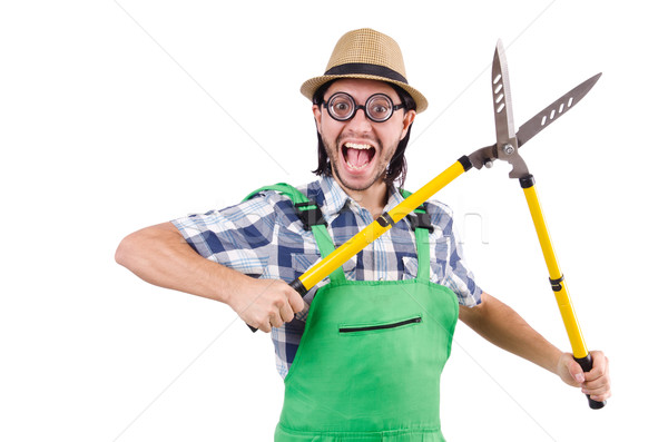 Funny gardener with shears isolated on white Stock photo © Elnur