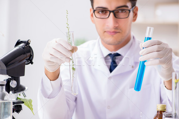 Biotechnologie scientifique chimiste travail laboratoire homme Photo stock © Elnur