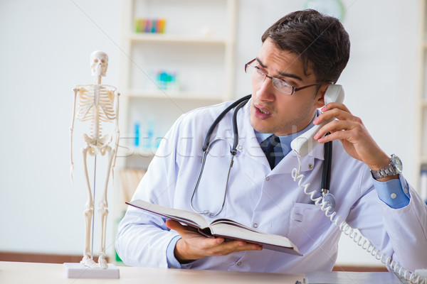 Médico estudante estudar ossos esqueleto homem Foto stock © Elnur