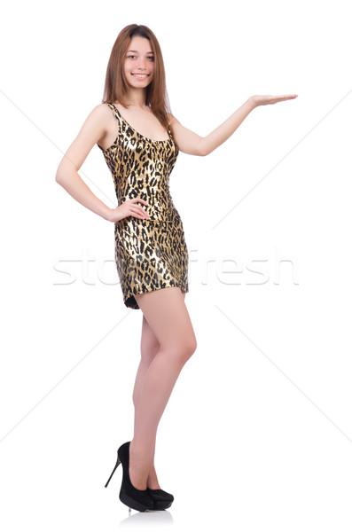 Bella donna Leopard abito isolato bianco donna Foto d'archivio © Elnur
