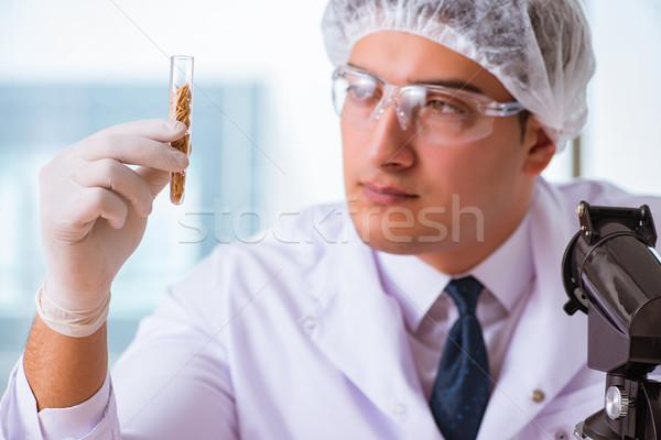 Voeding expert testen voedsel producten lab Stockfoto © Elnur