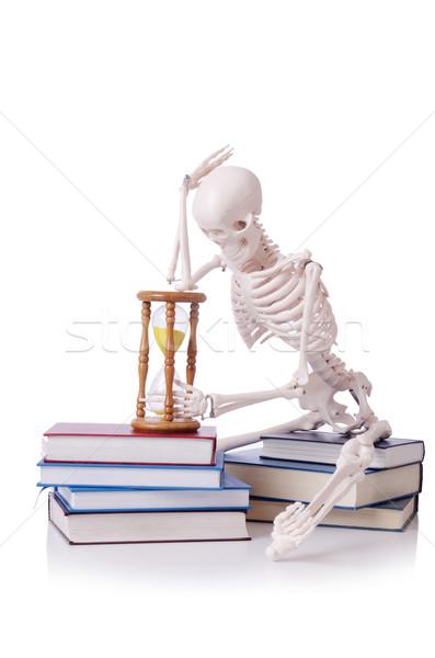 Csontváz olvas könyvek fehér könyv férfi Stock fotó © Elnur