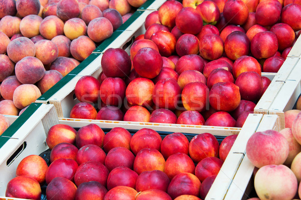 Fond orange fruits marché peau Photo stock © Elnur