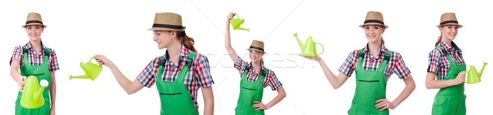 Collage of woman watering plants isolated on white Stock photo © Elnur