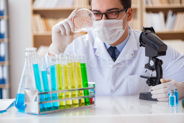 Doctor studying virus bacteria in the lab Stock photo © Elnur