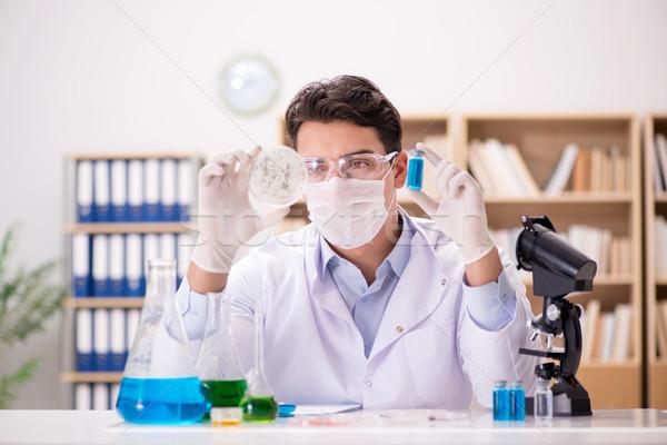 Männlichen Arzt arbeiten Labor Virus Impfstoff Mann Stock foto © Elnur