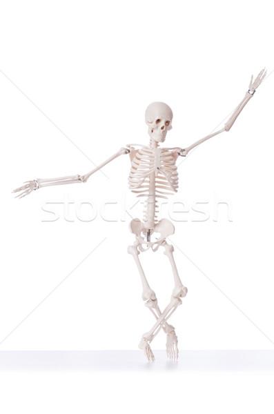 Csontváz izolált fehér férfi tánc orvosi Stock fotó © Elnur
