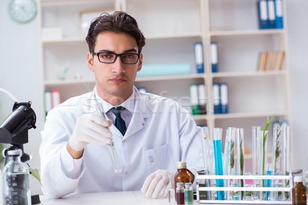 Biotechnologie wetenschapper scheikundige werken lab man Stockfoto © Elnur