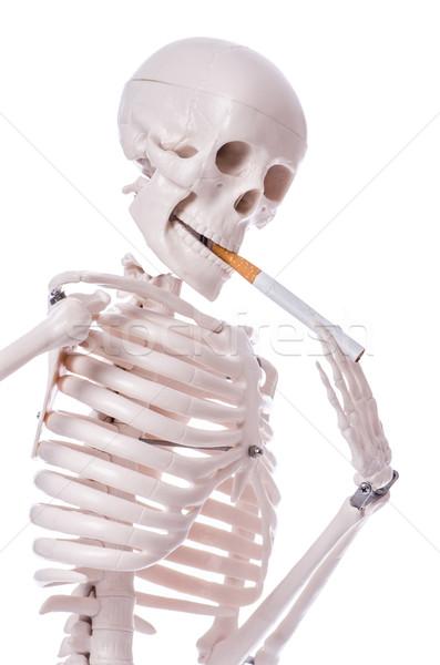 Squelette fumer cigarette isolé blanche homme Photo stock © Elnur