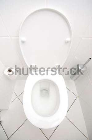 Toilet in the bathroom Stock photo © Elnur