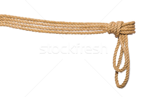 Rope isolated on the white background Stock photo © Elnur