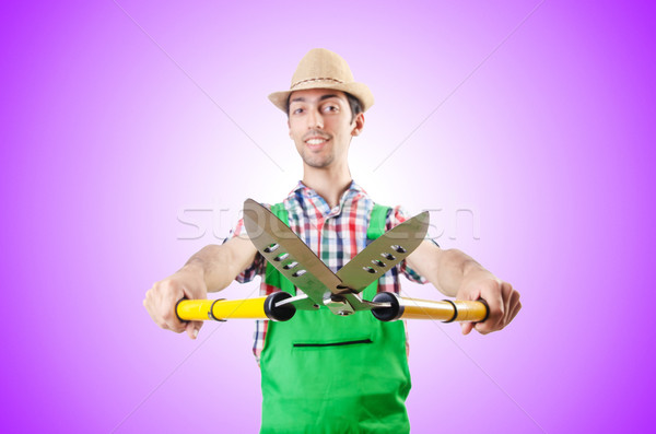 Man gardener with shears on white Stock photo © Elnur