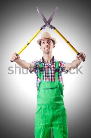 Muscular construtor homem ferramentas construção nu Foto stock © Elnur