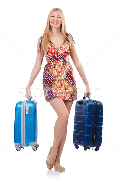 Donna viaggio business lavoro imprenditore Foto d'archivio © Elnur